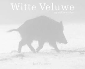 Jan Vermeer , Witte Veluwe
