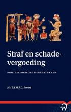 Erik-Jan Broers , Straf en schadevergoeding