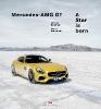 Bolsinger, Markus,Mercedes-AMG GT