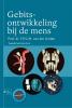 F.P.G.M. van der Linden,Gebitsontwikkeling bij de mens