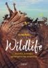 Dorien  Claes,Wildlife