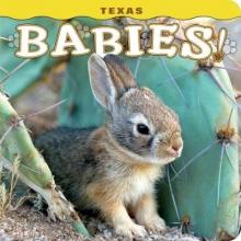 Texas Babies!