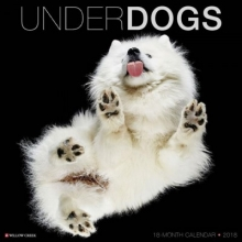 Underdogs 2018 Calendar