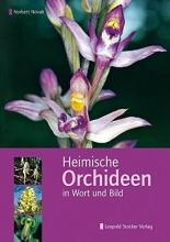 Novak, Norbert Heimische Orchideen in Wort und Bild
