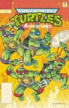 Teenage Mutant Ninja Turtles Adventures 16