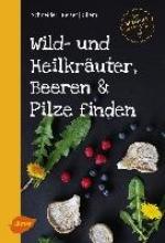 Schneider, Christine Wild- und Heilkräuter, Beeren und Pilze finden
