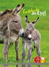 Schmidt, Judith Entdecke die Esel