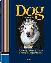 Tein Lucasson, Dog