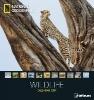 ,National Geographic Calendar Wildlife 2017