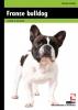 Adriaan  Louwrier,Franse bulldog