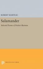 Robert Marteau,   Anne Winters Salamander