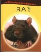 Deborah  Chancellor Rat