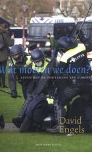 David Engels , Wat moeten we doen?