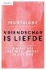 Michel de Montaigne,Vriendschap is liefde