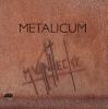 ,Metalicum Metaalsculpturen van Marc Vanhecke
