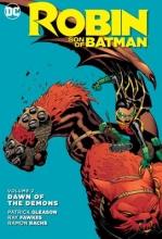 Gleason, Patrick,   Fawkes, Ray Robin Son of Batman 2