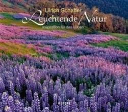 Schaffer, Ulrich Leuchtende Natur