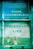 Chamberlain, Diane,Necessary Lies