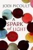 Picoult, Jodi,Spark of Light
