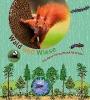Oftring, Bärbel,Wald und Wiese