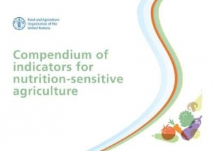 Food and Agriculture Organization of the United Nations Compendium of Indicators for Nutrition-Sensitive Agriculture