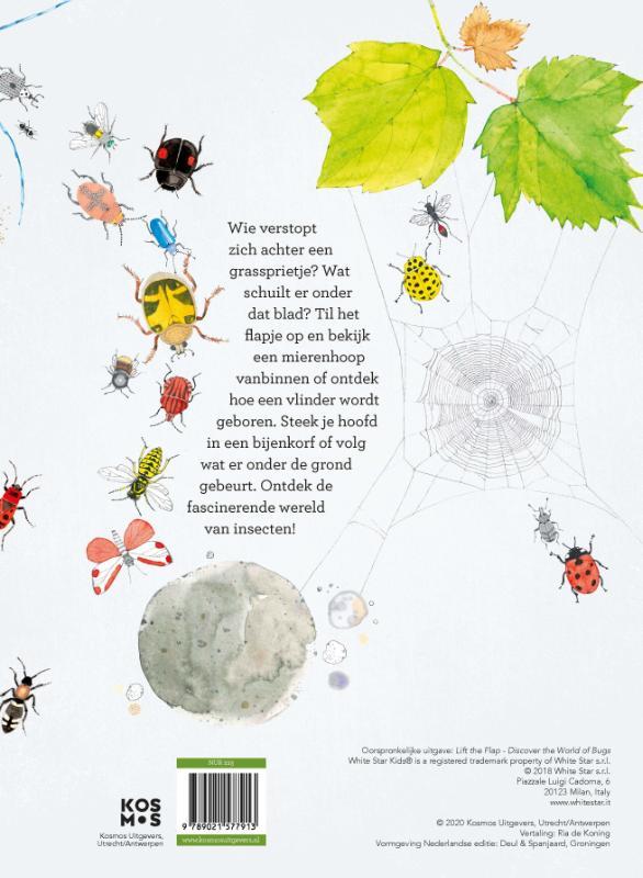 Cristina Peraboni, Cristina Banfi,Ontdek de wereld van insecten