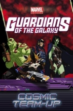 Caramagna, Joe,   Fine, Joshua,   Mantlo, Bill Marvel Universe Guardians of the Galaxy