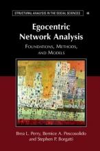 Brea L. Perry,   Bernice A. Pescosolido,   Stephen P. Borgatti Structural Analysis in the Social Sciences