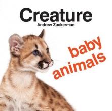 Zuckerman, Andrew Creature Baby Animals