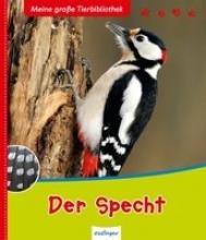 Zysk, Stefanie Der Specht