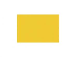 , etalagekarton Folia 48x68cm 380gr pak a 10 vel goudgeel