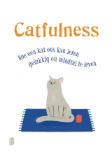 Paolo  Valentino Catfulness