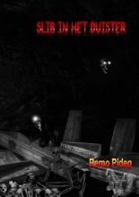 Remo  Pideg Slib in het duister