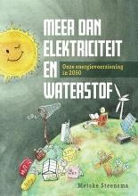 Metske Steensma , Meer dan elektriciteit en waterstof