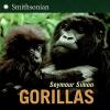 Simon, Seymour,Gorillas