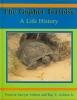 Ashton, Patricia Sawyer,   Ashton, Ray E.,The Gopher Tortoise