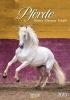 ,Pferde 2018 Kalender