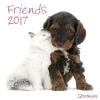 ,Friends 2017 Brosch�renkalender