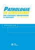 J.H.  Vrijenhoek,Pathologie en geneeskunde voor fysiotherapie, bewegingstherapie en ergotherapie