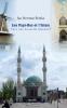 Jan Herman  Brinks,Les Pays-Bas et l'Islam. Vers une nouvelle identité?