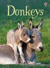 Maclaine, James Beginners Donkeys