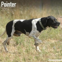 Avonside Publishing Ltd Pointer Calendar 2018
