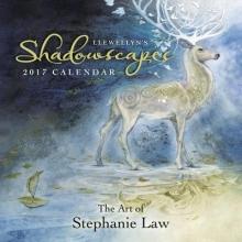 Llewellyn`s Shadowscapes 2017 Calendar