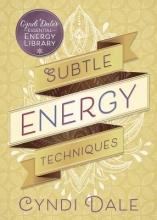 Cyndi Dale Subtle Energy Techniques