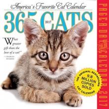 365 Cats 2017 Calendar
