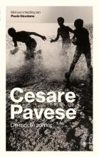 Cesare  Pavese De mooie zomer