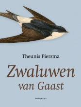 Theunis  Piersma Zwaluwen van Gaast