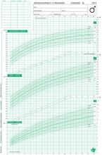 TNO Groeidiagrammen 2010 Nederlandse jongens 0-15 maanden (50 stuks)