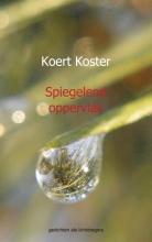 Koert en Marleen  Koster Spiegelend oppervlak