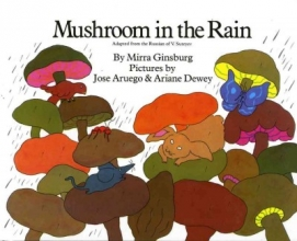 Ginsburg, Mirra,   Aruego, Jose Mushroom in the Rain